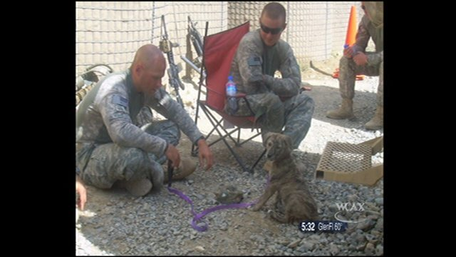 Connie in Afghanistan with her friends in the Guard.