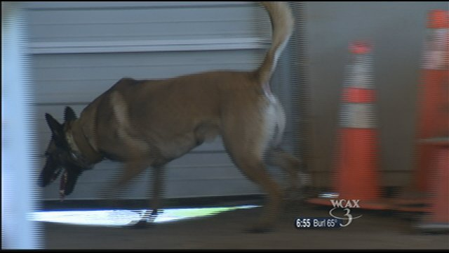 K-9 Drager combs a barn for drugs.