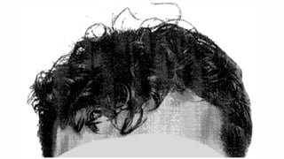Composite of suspect hair